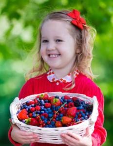 frutti rossi d'inverno